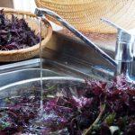 キッチンの蛇口から濁った水が出る!原因と対処法
